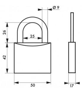 Kłódka TYPE 1 50 mm Thirard